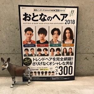 おとなのヘア2018発売